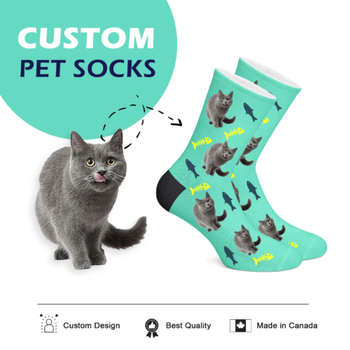 Custom Cat Socks Teal - Full Body - 2